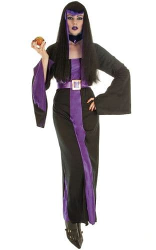 Mystical Sorceress - Halloween Fancy Dress (Fun Shack)