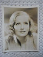 Greta Garbo Original MGM (Metro Goldwyn Mayer) Portrait Still, circa 1932