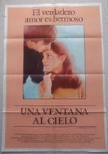 Window to the Sky, Original Argentinian Movie Poster, Beau Bridges, '75