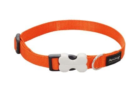 Red Dingo Dog collar Classic Orange