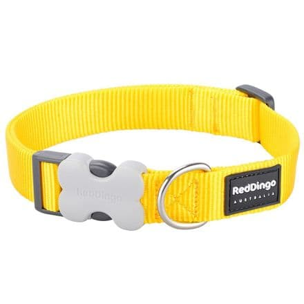 Red Dingo Dog collar Classic Yellow