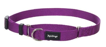 Red Dingo Dog collar Half Check (Martingale) Collar Classic Purple