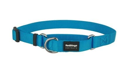 Red Dingo Dog collar Half Check (Martingale) Collar Classic Turquoise