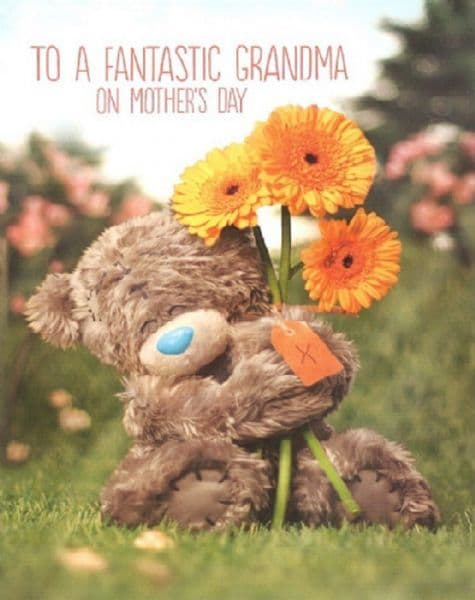 .To A Fantastic Grandma Me To You Mother's Day Card