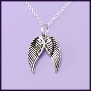 Angel wings, pair of moveable (2)