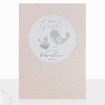 LD - Let the Adventure Begin Baby Girl Card